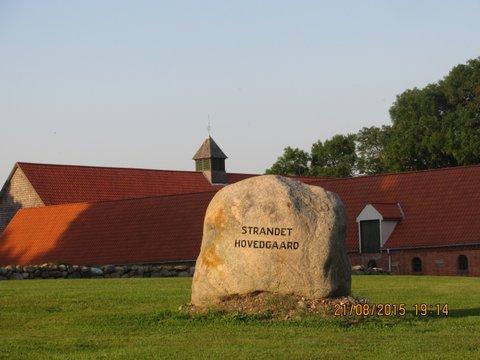 Strandet Hovedgaard 2015